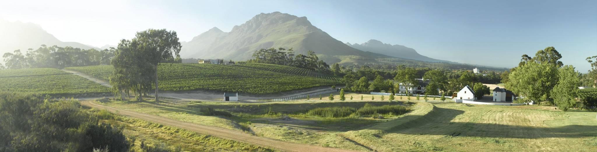 Kaaps Wijnhuis - bijzondere boutique wijnen uit Zuid-Afrika