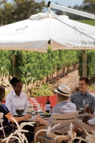 Glenelly Wine Estate -terras