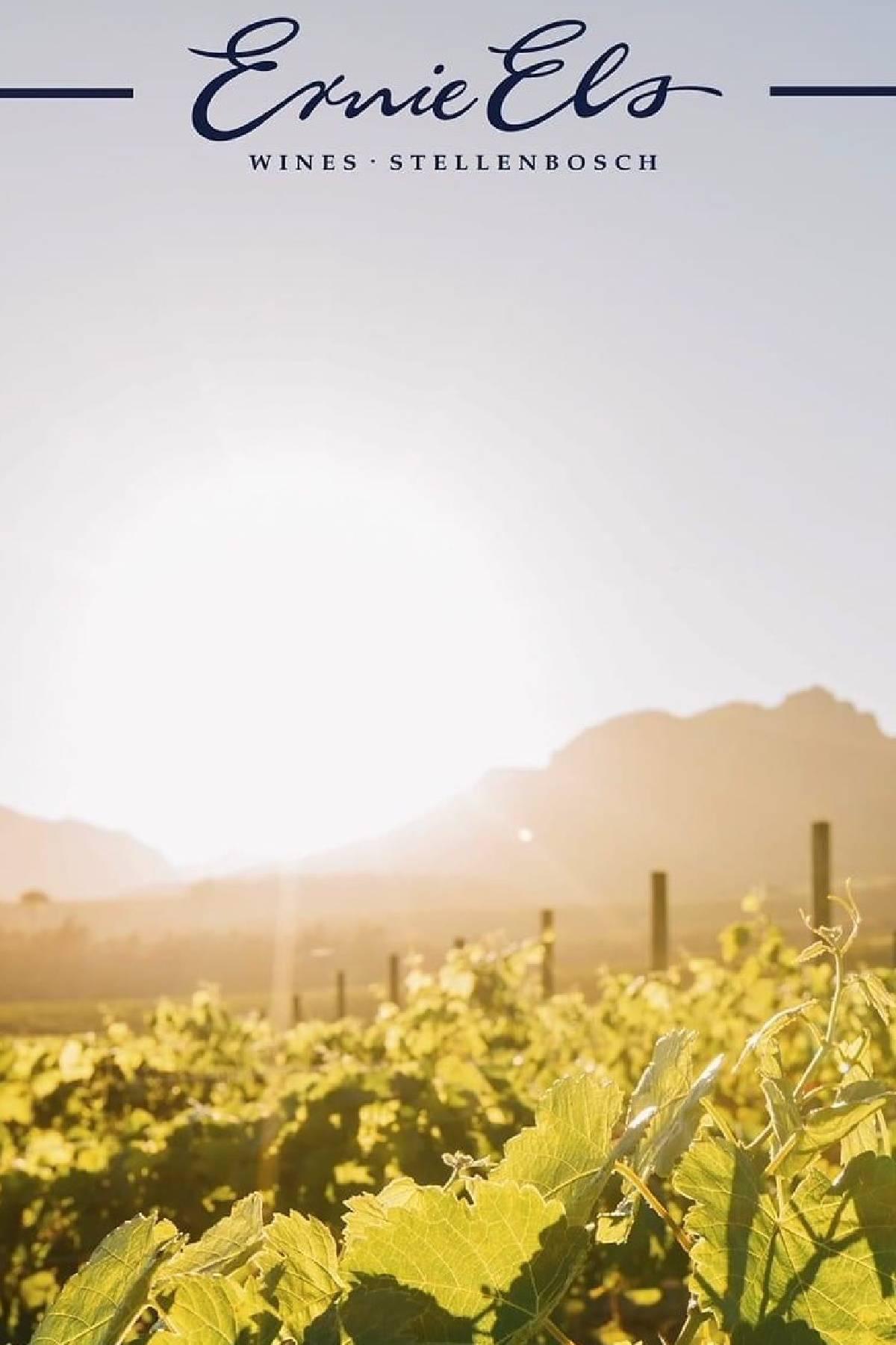 Ernie Els Wines Stellenbosch